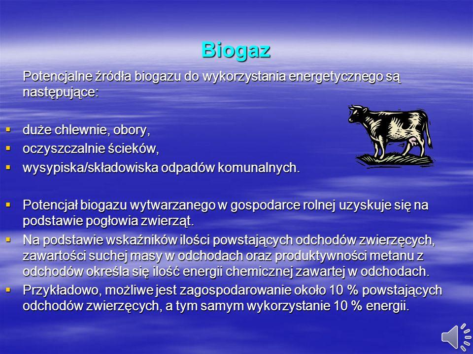 BiogazPotencjalne źródła biogazu do wykorzystania energetycznego są następujące: duże chlewnie, obory,