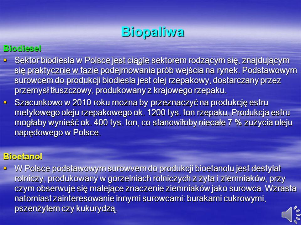Biopaliwa Biodiesel.