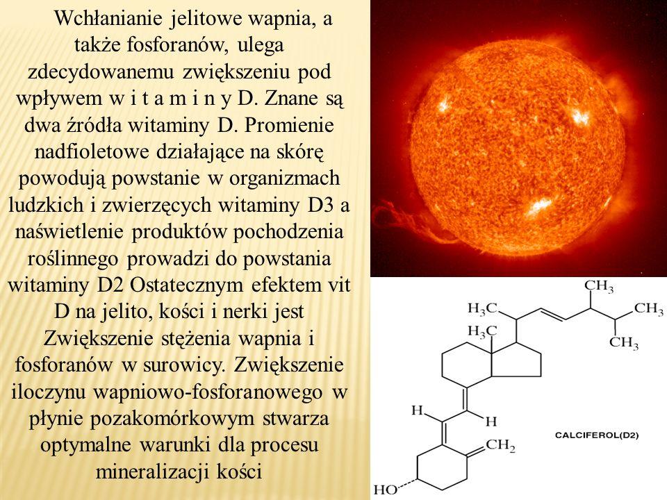 Wchłanianie jelitowe wapnia, a także fosforanów, ulega zdecydowanemu zwiększeniu pod wpływem w i t a m i n y D.