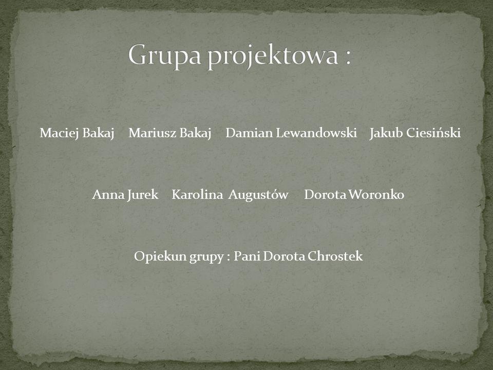 Grupa projektowa :