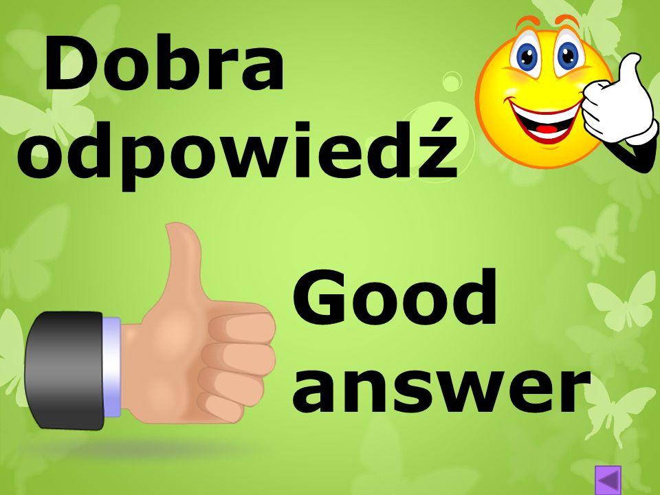 Dobra odpowiedź Good answer