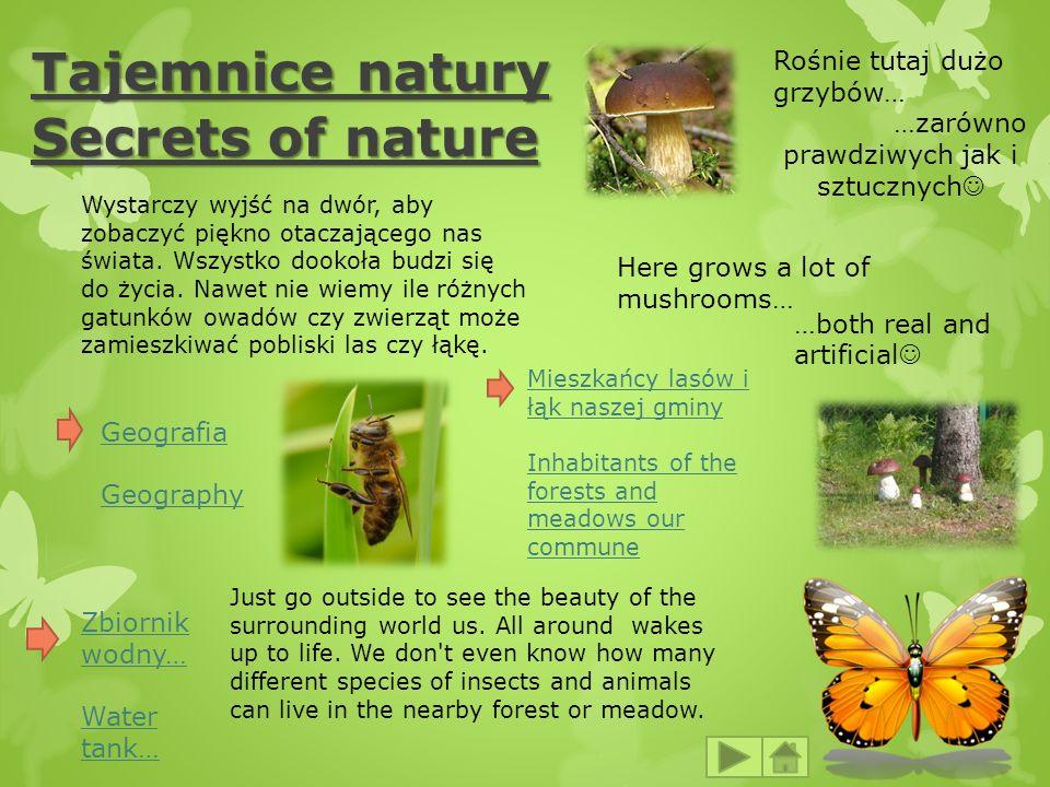 Tajemnice natury Secrets of nature