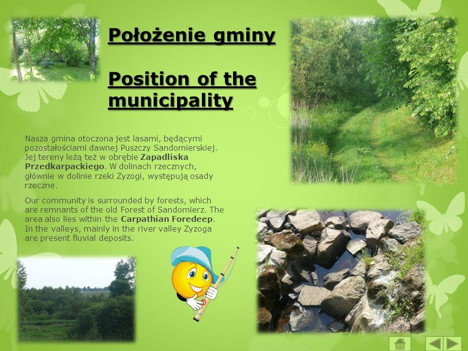 Położenie gminy Position of the municipality