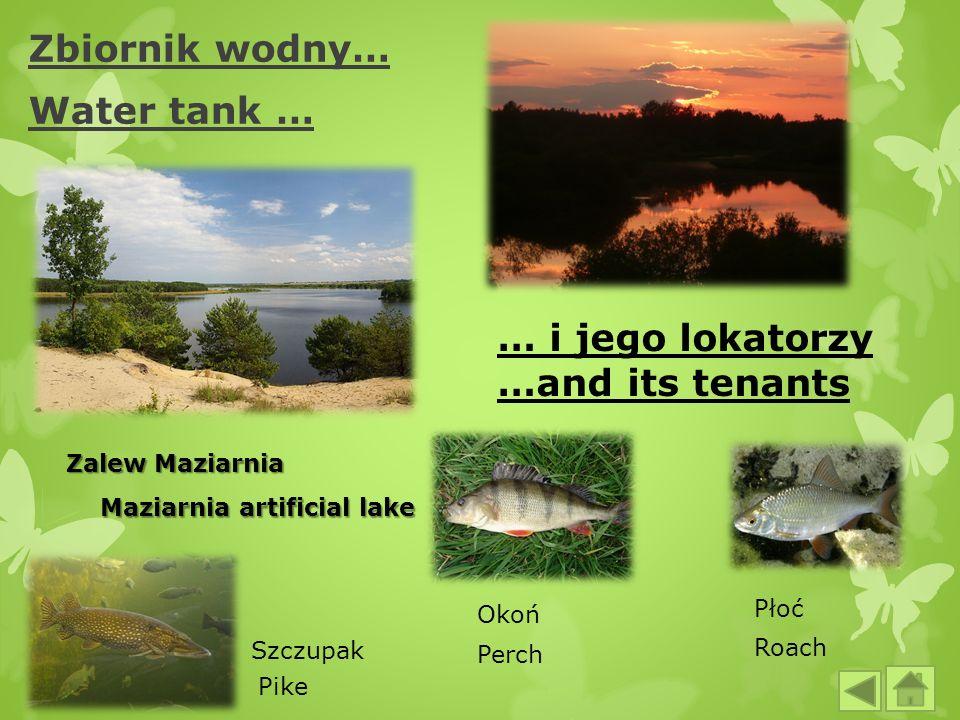 Zbiornik wodny… Water tank …