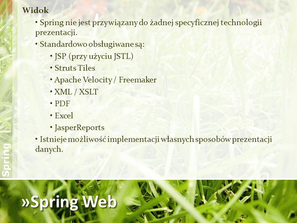 Widok Spring nie jest przywiązany do żadnej specyficznej technologii prezentacji. Standardowo obsługiwane są: