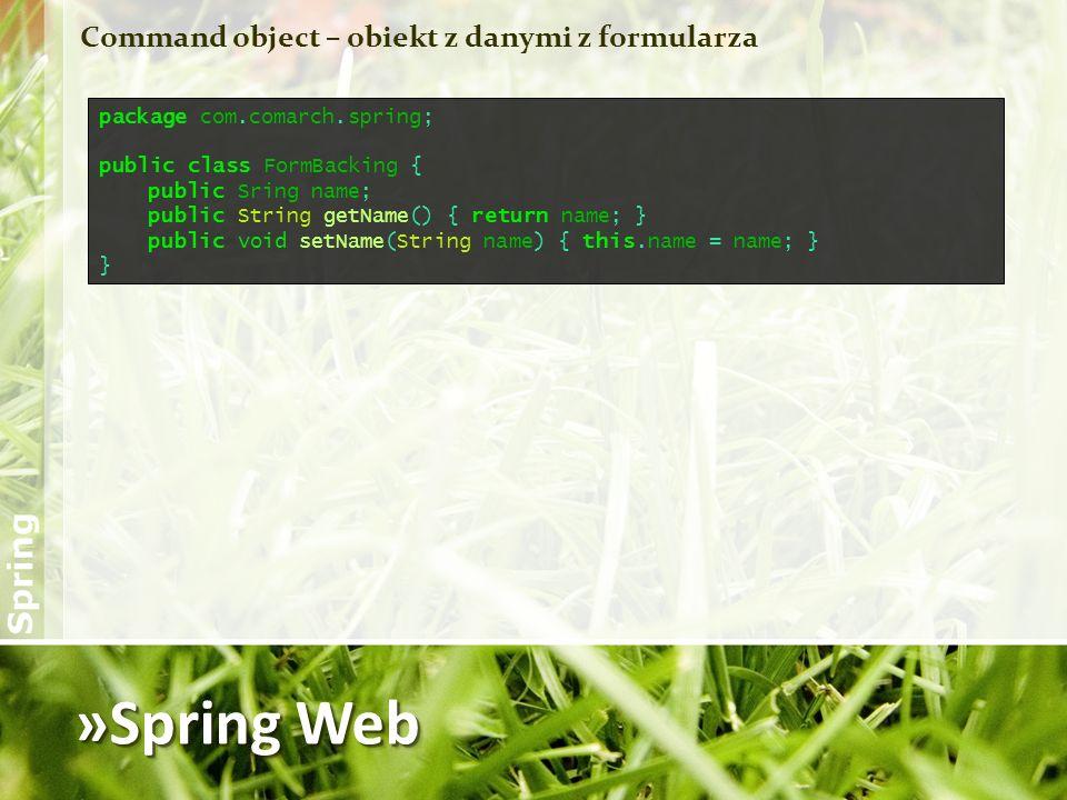 »Spring Web Command object – obiekt z danymi z formularza