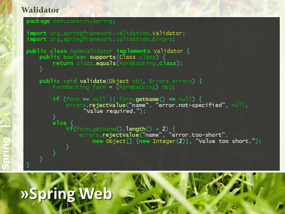 »Spring Web Walidator package com.comarch.spring;