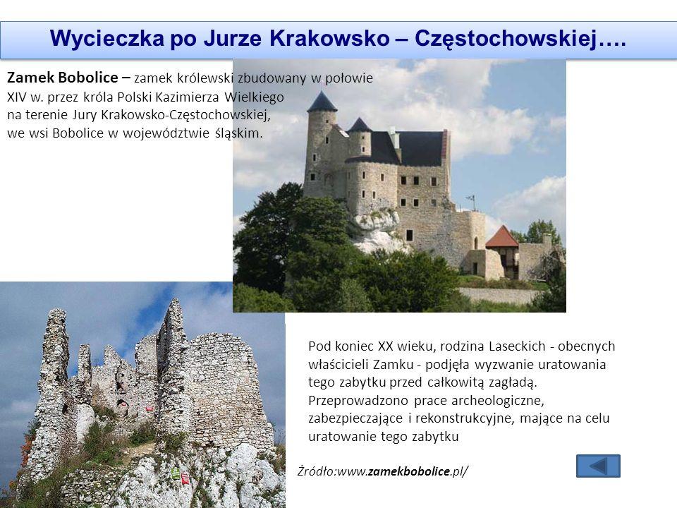 Wycieczka po Jurze Krakowsko – Częstochowskiej….