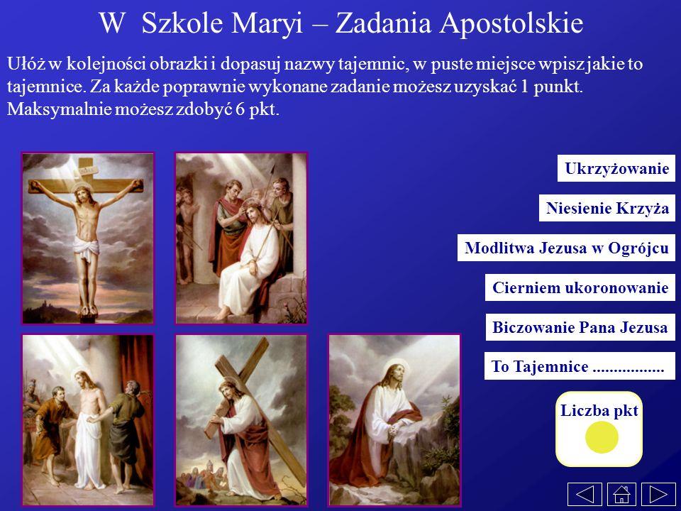 W Szkole Maryi – Zadania Apostolskie