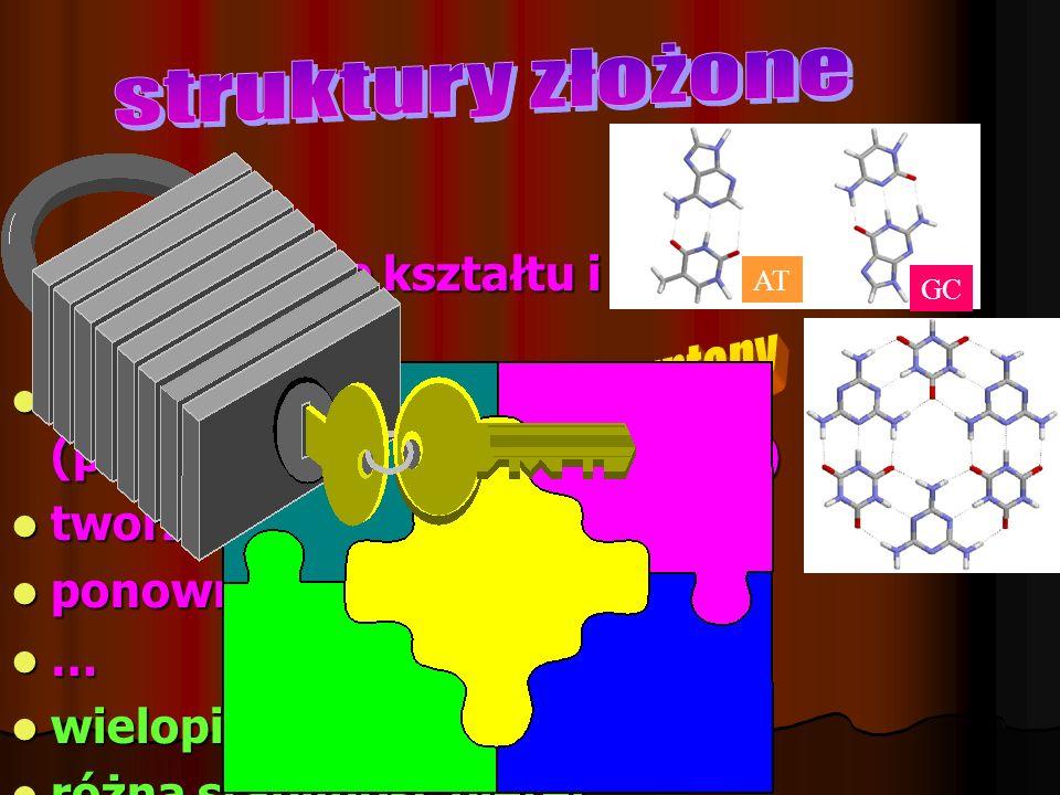 struktury złożone syntony Dopasowanie kształtu i oddziaływań