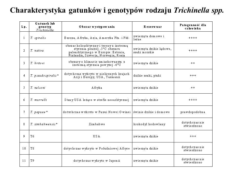 Charakterystyka gatunków i genotypów rodzaju Trichinella spp.