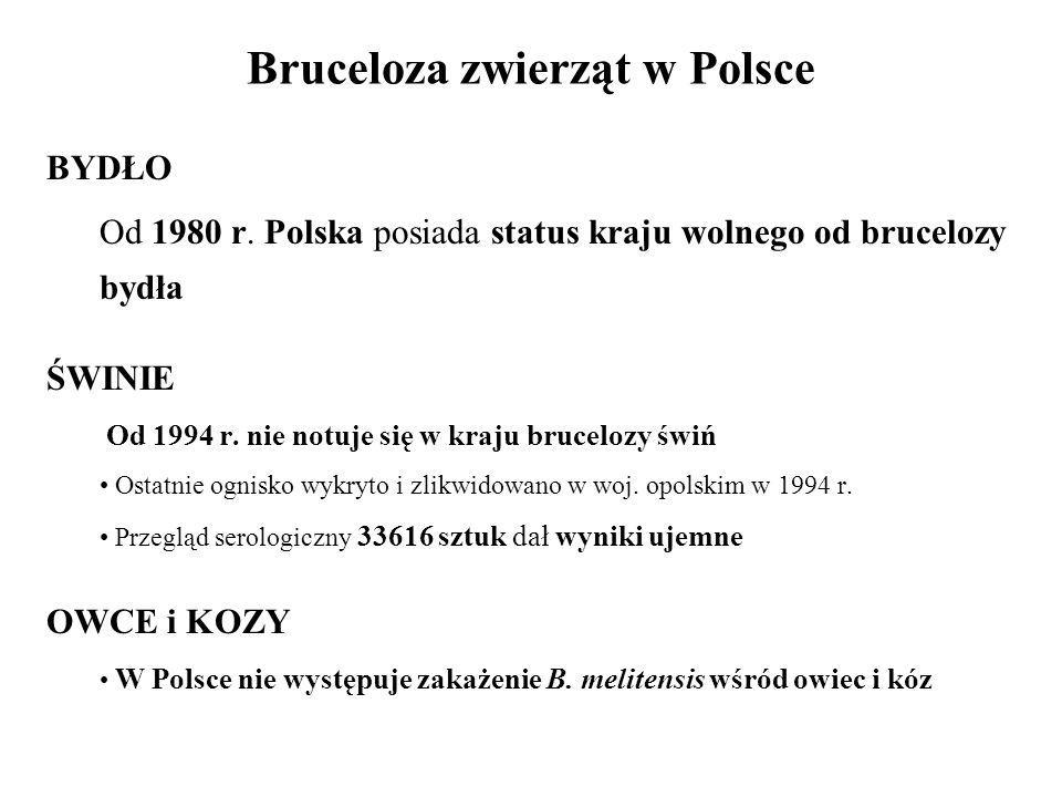 Bruceloza zwierząt w Polsce
