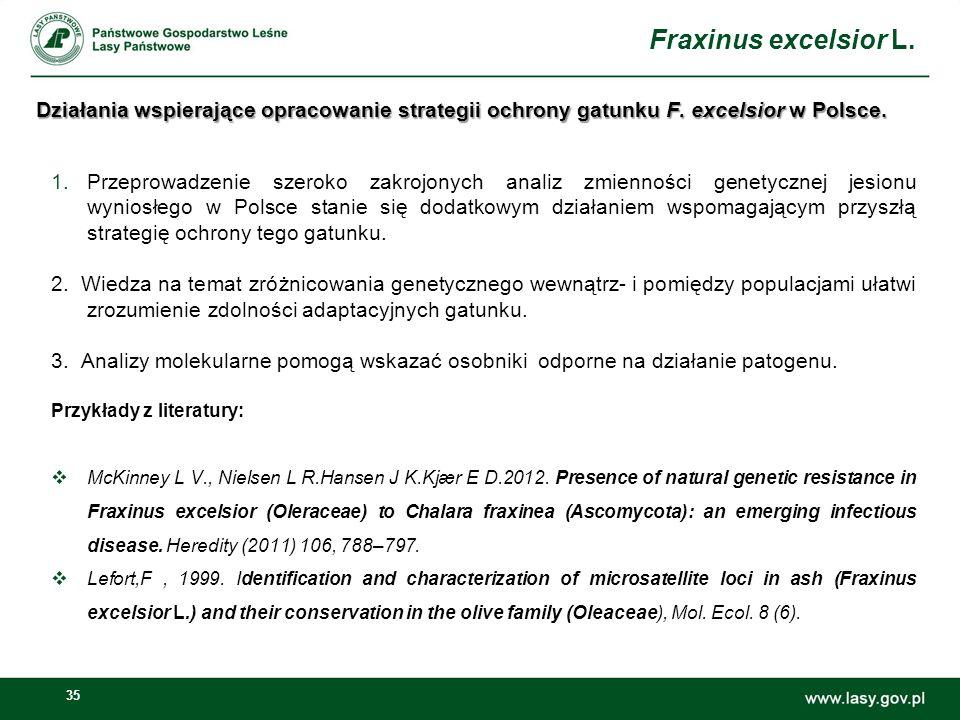 Fraxinus excelsior L. Działania wspierające opracowanie strategii ochrony gatunku F. excelsior w Polsce.