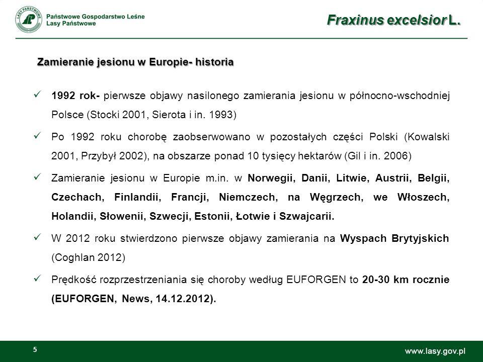 Zamieranie jesionu w Europie- historia