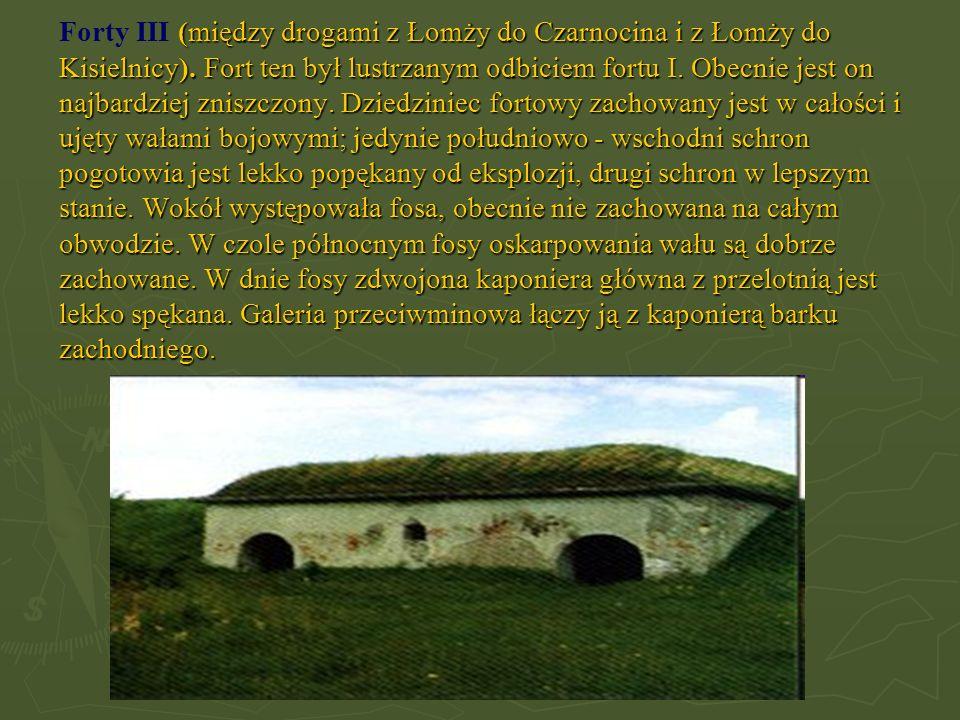 Forty III (między drogami z Łomży do Czarnocina i z Łomży do Kisielnicy).