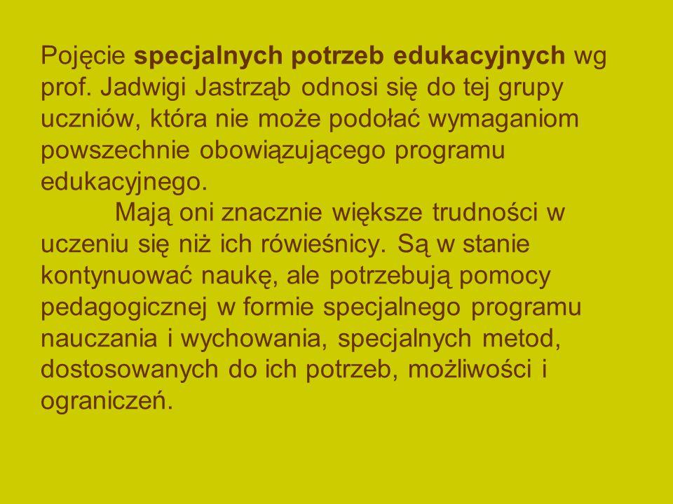Pojęcie specjalnych potrzeb edukacyjnych wg prof