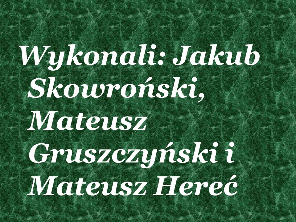 Wykonali: Jakub Skowroński, Mateusz Gruszczyński i Mateusz Hereć