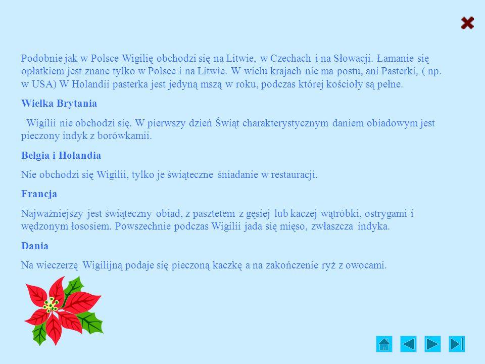Podobnie jak w Polsce Wigilię obchodzi się na Litwie, w Czechach i na Słowacji. Łamanie się opłatkiem jest znane tylko w Polsce i na Litwie. W wielu krajach nie ma postu, ani Pasterki, ( np. w USA) W Holandii pasterka jest jedyną mszą w roku, podczas której kościoły są pełne.