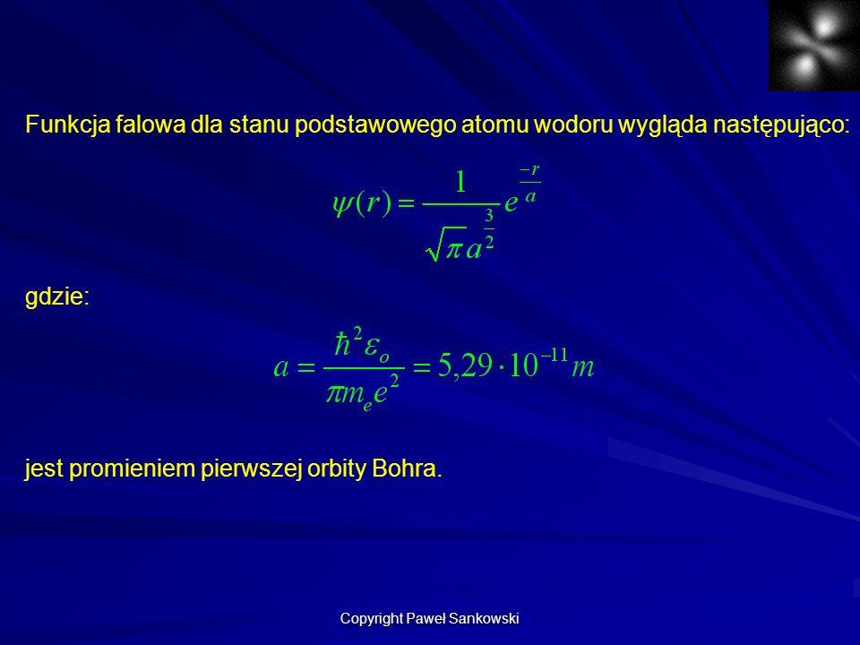 Copyright Paweł Sankowski