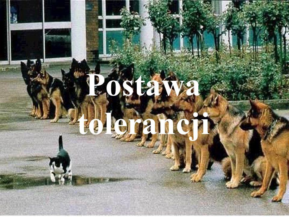 Postawa tolerancji Postawa tolerancji