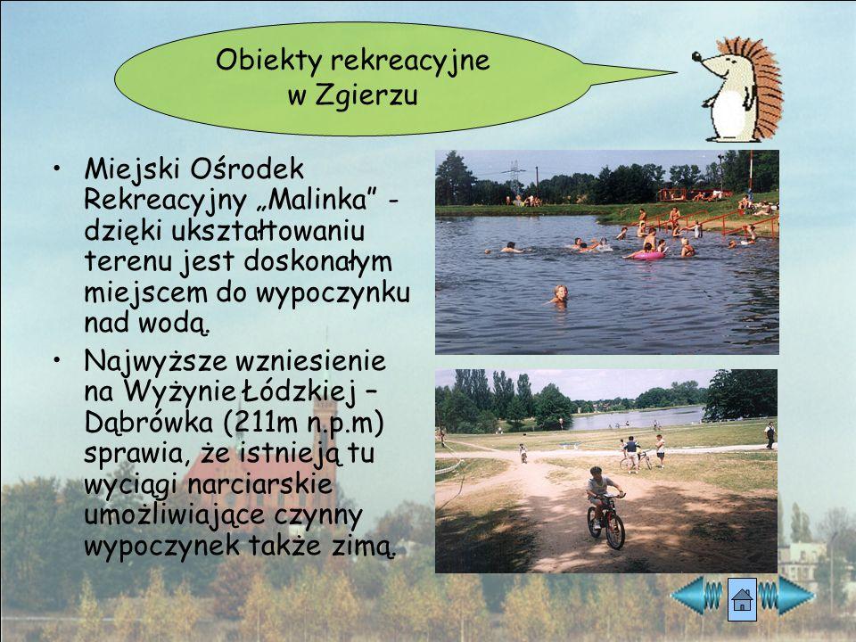 """Obiekty rekreacyjne w Zgierzu. Miejski Ośrodek Rekreacyjny """"Malinka - dzięki ukształtowaniu terenu jest doskonałym miejscem do wypoczynku nad wodą."""