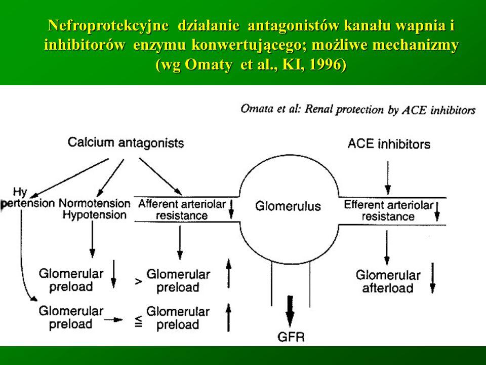 Nefroprotekcyjne działanie antagonistów kanału wapnia i inhibitorów enzymu konwertującego; możliwe mechanizmy (wg Omaty et al., KI, 1996)