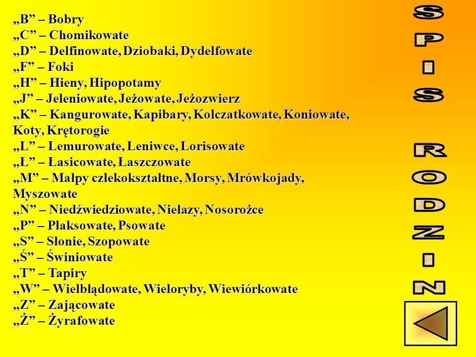 """""""B – Bobry """"C – Chomikowate """"D – Delfinowate, Dziobaki, Dydelfowate """"F – Foki """"H – Hieny, Hipopotamy """"J – Jeleniowate, Jeżowate, Jeżozwierz """"K – Kangurowate, Kapibary, Kolczatkowate, Koniowate, Koty, Krętorogie """"L – Lemurowate, Leniwce, Lorisowate """"Ł – Łasicowate, Łaszczowate """"M – Małpy człekokształtne, Morsy, Mrówkojady, Myszowate """"N – Niedźwiedziowate, Niełazy, Nosorożce """"P – Płaksowate, Psowate """"S – Słonie, Szopowate """"Ś – Świniowate """"T – Tapiry """"W – Wielbłądowate, Wieloryby, Wiewiórkowate """"Z – Zającowate """"Ż – Żyrafowate"""