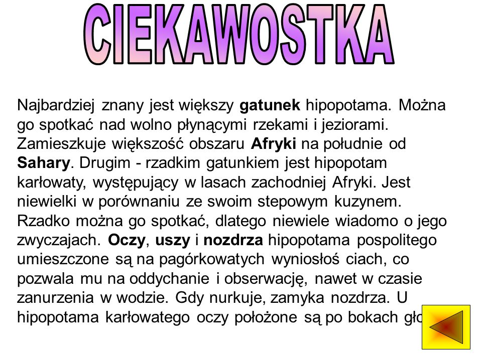 CIEKAWOSTKA