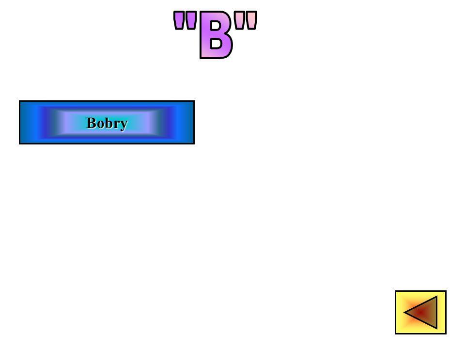 B Bobry