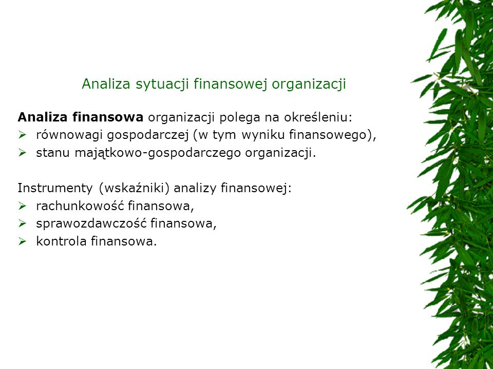 Analiza sytuacji finansowej organizacji