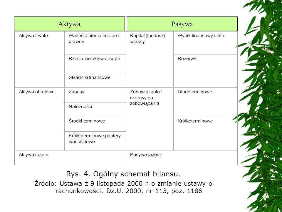 Rys. 4. Ogólny schemat bilansu.