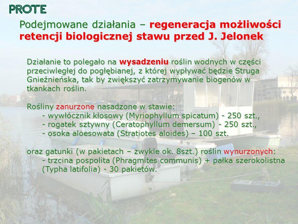 Podejmowane działania – regeneracja możliwości retencji biologicznej stawu przed J. Jelonek
