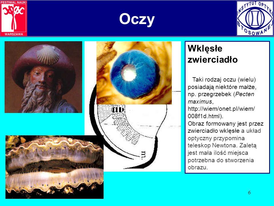 Oczy Oczy Wklęsłe zwierciadło 008f1d.html).