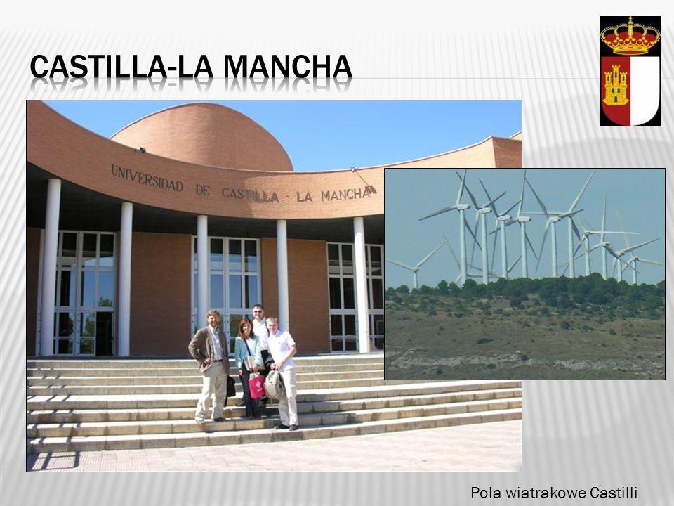 Castilla-la mancha Pola wiatrakowe Castilli