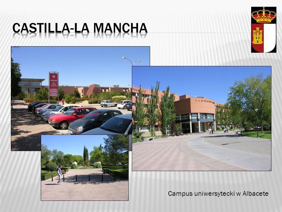 Castilla-la mancha Campus uniwersytecki w Albacete