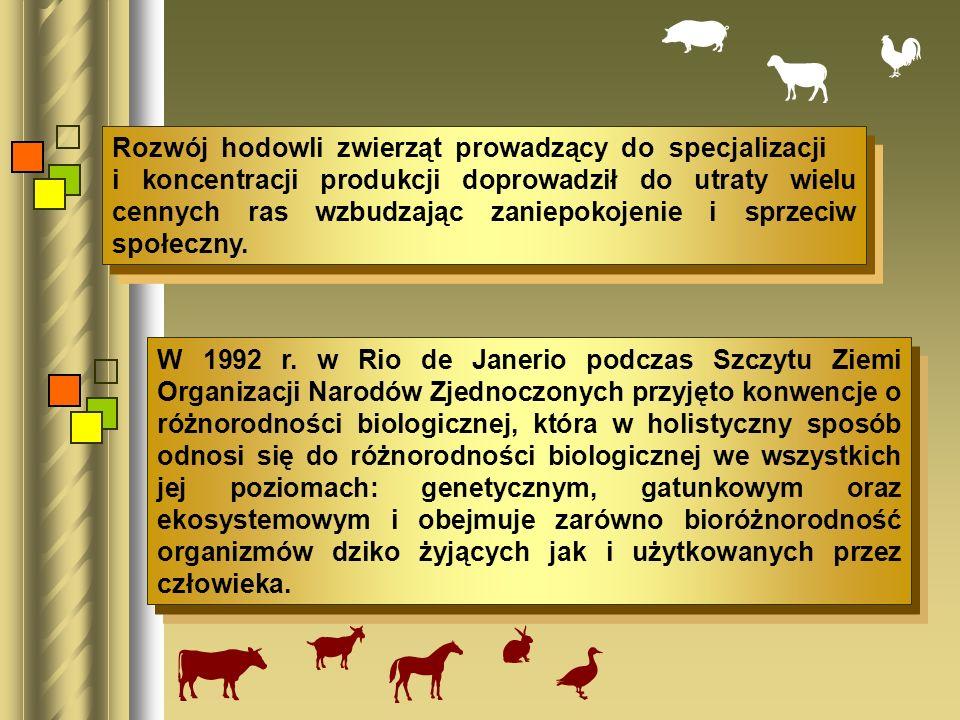 Rozwój hodowli zwierząt prowadzący do specjalizacji