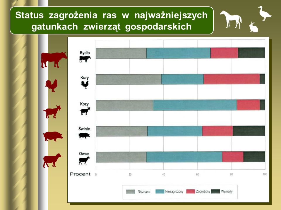 Status zagrożenia ras w najważniejszych gatunkach zwierząt gospodarskich