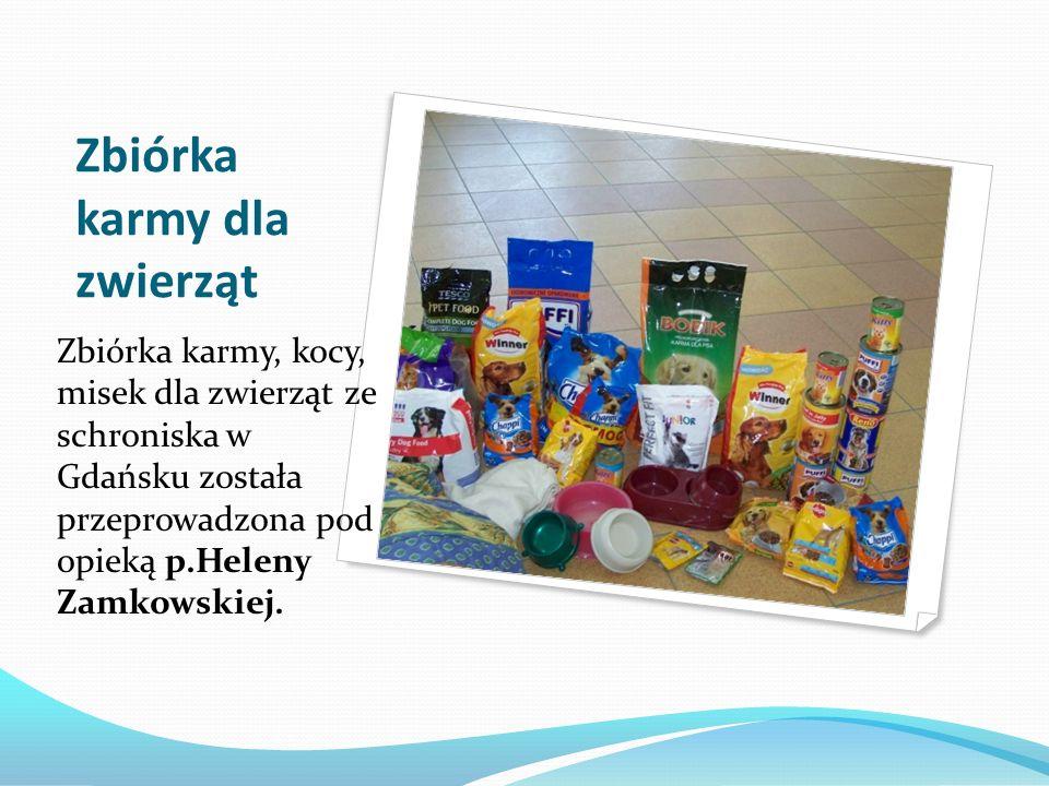 Zbiórka karmy dla zwierząt