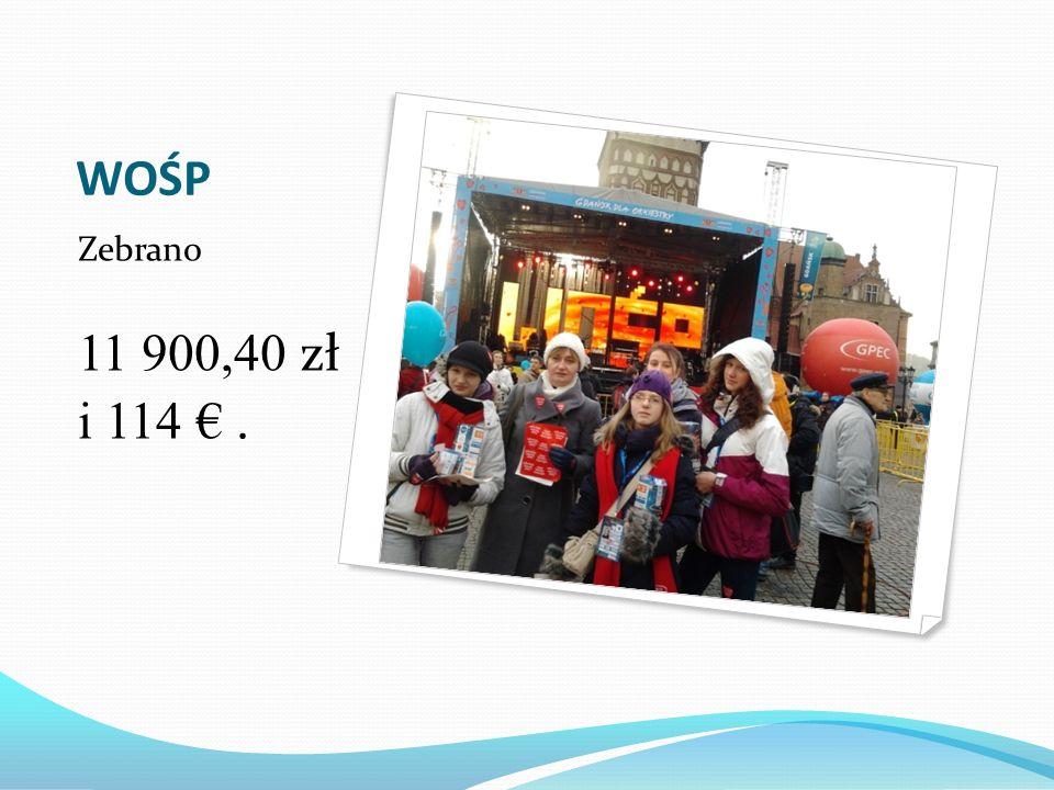 WOŚP Zebrano 11 900,40 zł i 114 € .