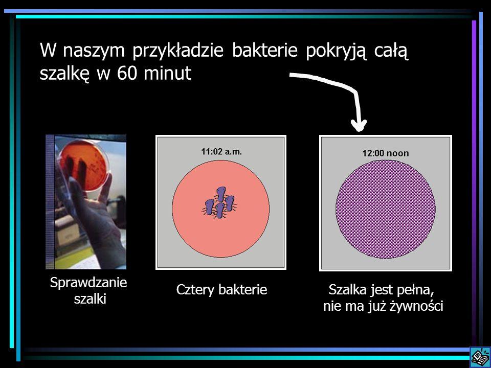W naszym przykładzie bakterie pokryją całą szalkę w 60 minut