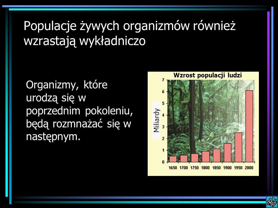 Populacje żywych organizmów również wzrastają wykładniczo