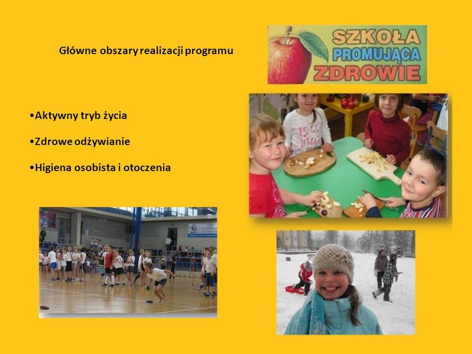 Główne obszary realizacji programu