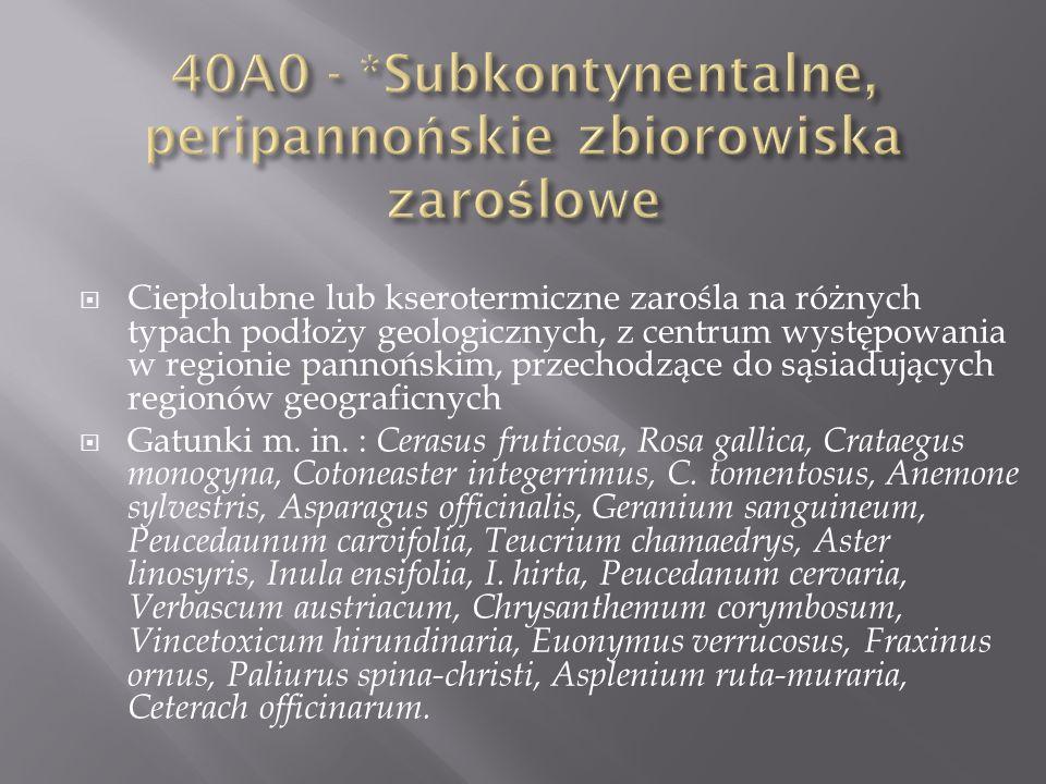 40A0 - *Subkontynentalne, peripannońskie zbiorowiska zaroślowe