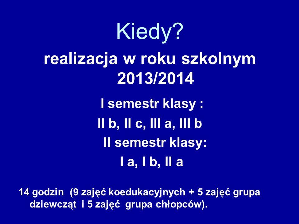 realizacja w roku szkolnym 2013/2014