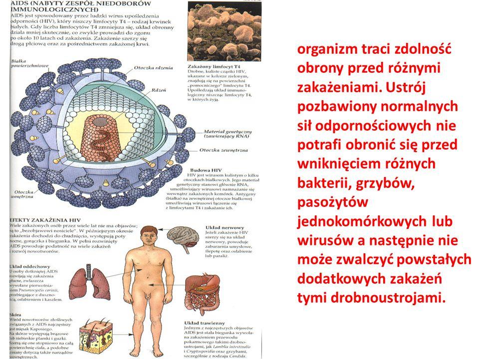 organizm traci zdolność obrony przed różnymi zakażeniami