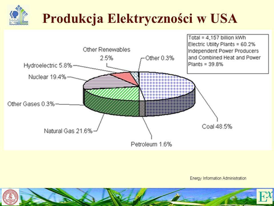 Produkcja Elektryczności w USA