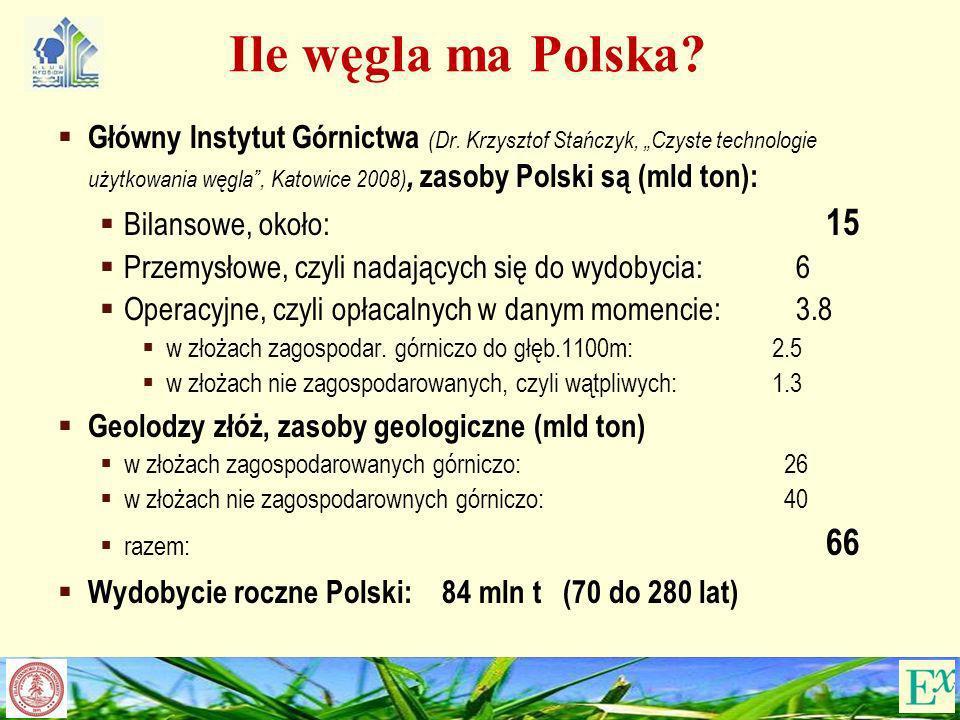 Ile węgla ma Polska