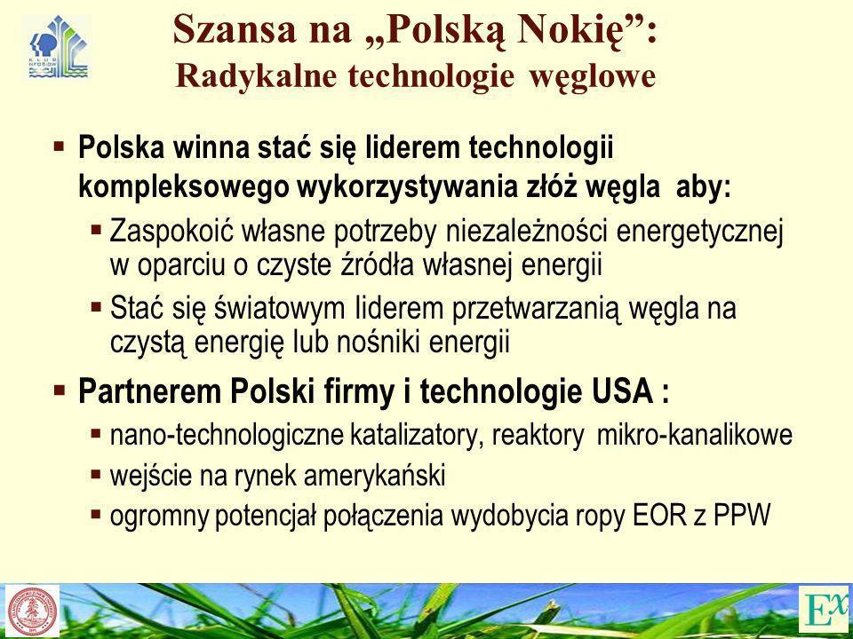 """Szansa na """"Polską Nokię : Radykalne technologie węglowe"""