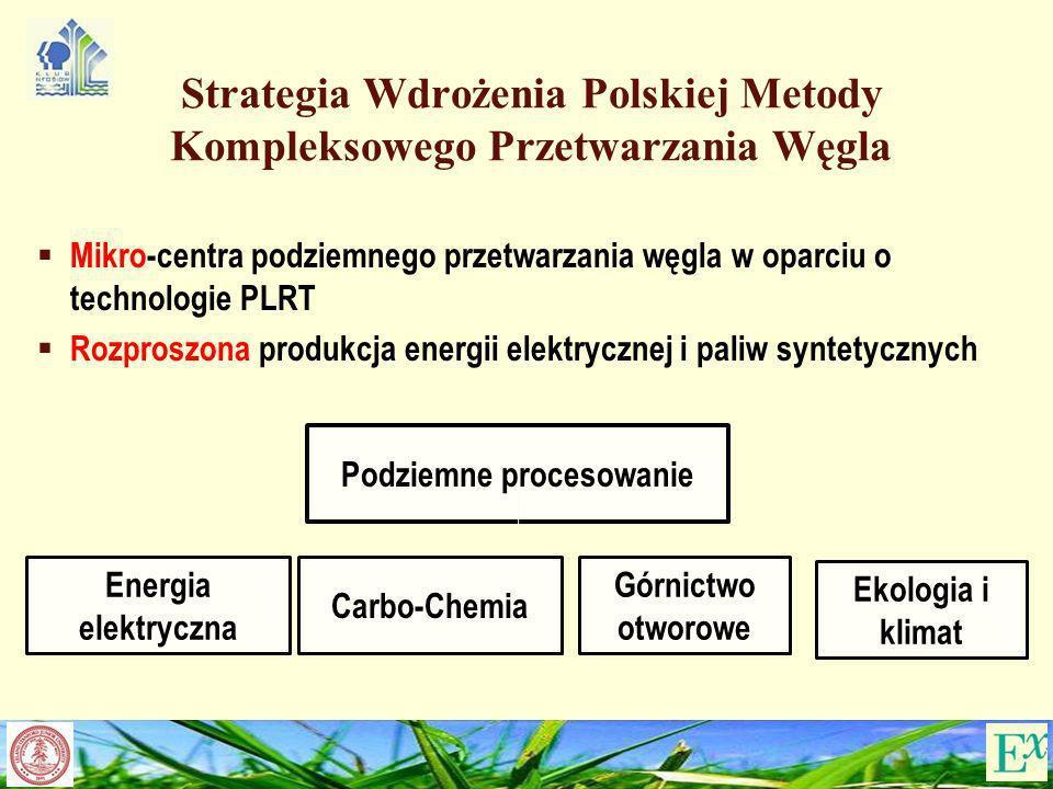 Strategia Wdrożenia Polskiej Metody Kompleksowego Przetwarzania Węgla