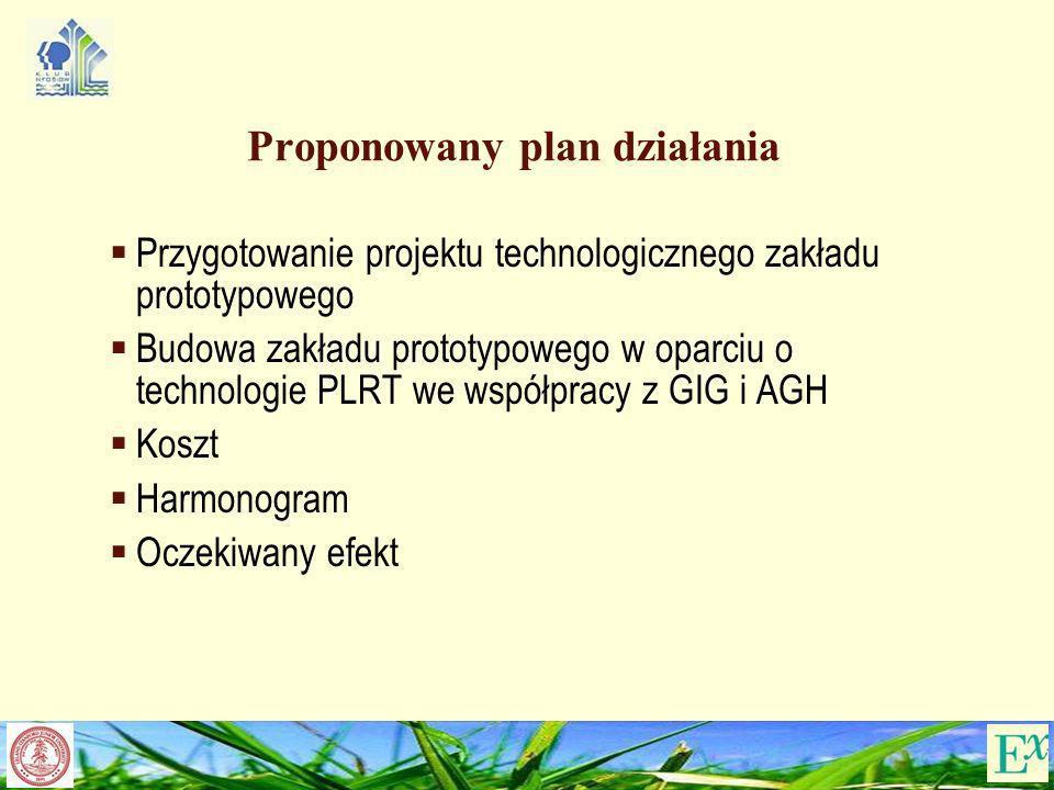 Proponowany plan działania